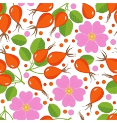 Seamless pattern with rose hip vector