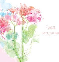 Spring floral background - watercolor tender vector image vector image