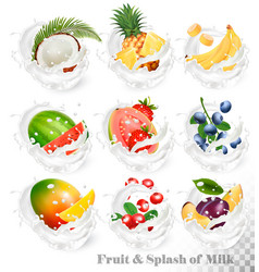 big collection of fruit in a milk splash vector image