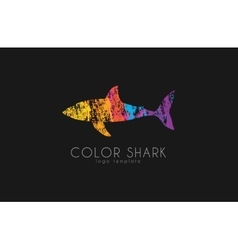 Shark logo color shark logo in grunge style vector