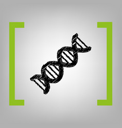The dna sign black scribble icon in vector