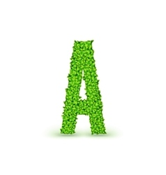 Green leaves font a vector