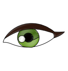 Drawing female eye vision optic cartoon vector