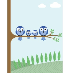 Blue birds vector