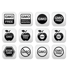 Gmo food no gmo or gmo free icons set vector