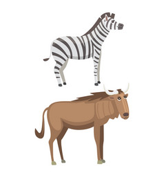 african animals cartoon set zebra safari vector image vector image
