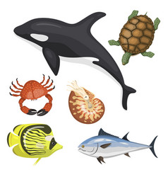 set of different types of sea animals vector image