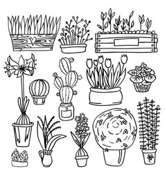 Set of indoor plants vector