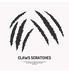 Isolated claws scratches vector image