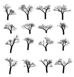 Winter tree set dry with fallen leaves dead vector
