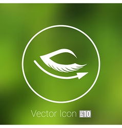 Eye with lashes long eyelashes icon vector
