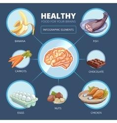 Brain food infographics vector