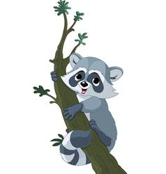 funny cartoon raccoon vector image vector image