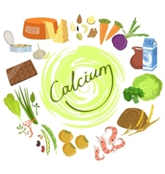 Products rich in calcium infographic vector