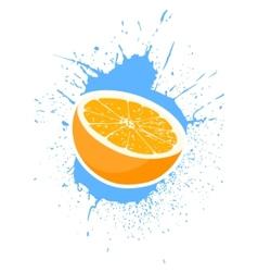ripe oranges vector image