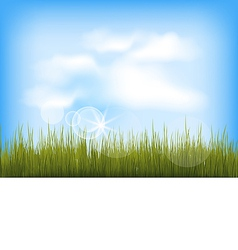 Summer background with green grass blue sky clouds vector
