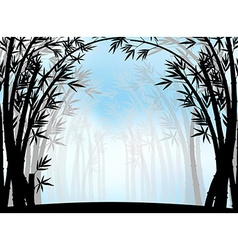 Silhouette bamboo jungle with fog vector image