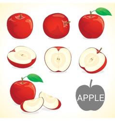Set of apple fruit in various styles vector