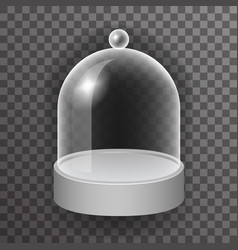dome glass showcase box isolated 3d realistic shop vector image