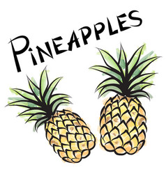 Pineapple sign isolated fruit tag fresh farm vector