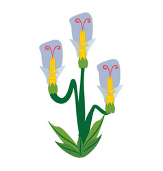 beauty flower spring icon vector image vector image
