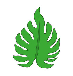 Color image irregular green leaf vector