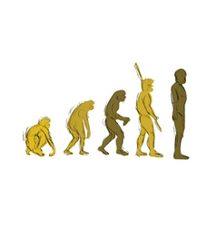Evolution handdraw vector