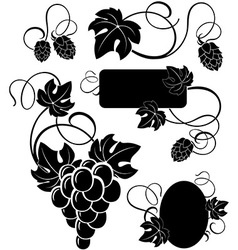 Grapevine and the branches of hops vector