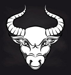 white bulls head on blackboard background vector image vector image