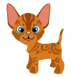 Cartoon ginger kitten with blue eyes pets vector