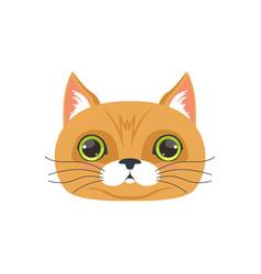 Cute brown cat head funny cartoon animal vector