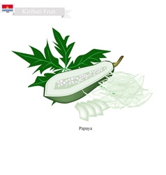 Fresh papaya a famous fruit in kiribati vector