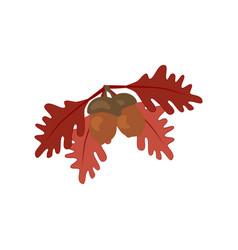 oak leaf and acorn vector image vector image