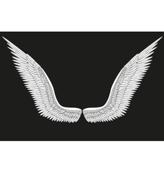 Sketch open white angel wings vector
