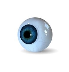 Eye ball isolated on white background vector