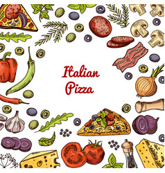 hand drawn pizza ingridients and spices vector image vector image