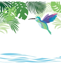 Tropical leaves and colibri vector