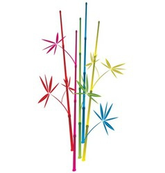 bamboo branches vector image