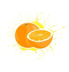 Yummy oranges vector