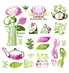 Chinese blossom and green tea emblems vector image