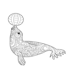 fur seal coloring for adults vector image