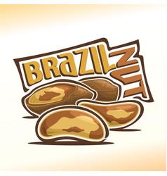 Logo for brazil nuts vector