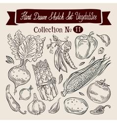 Vegetables sketch set of elements - beet peas vector