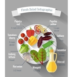 Salad cooking infographics vector