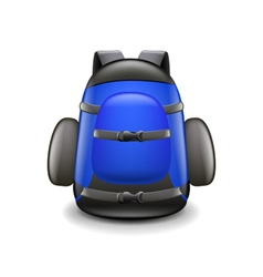 Backpack isolated on white vector image vector image