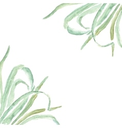 Eco frame grass decorations and greetings cards vector image