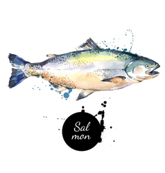 Watercolor hand drawn salmon isolated fresh vector