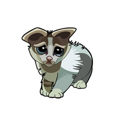 cartoon kitten unhappy vector image vector image
