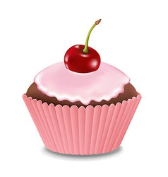 Cupcake with cream and cherry vector