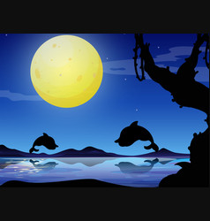 Silhouette background scene with dolphin at night vector